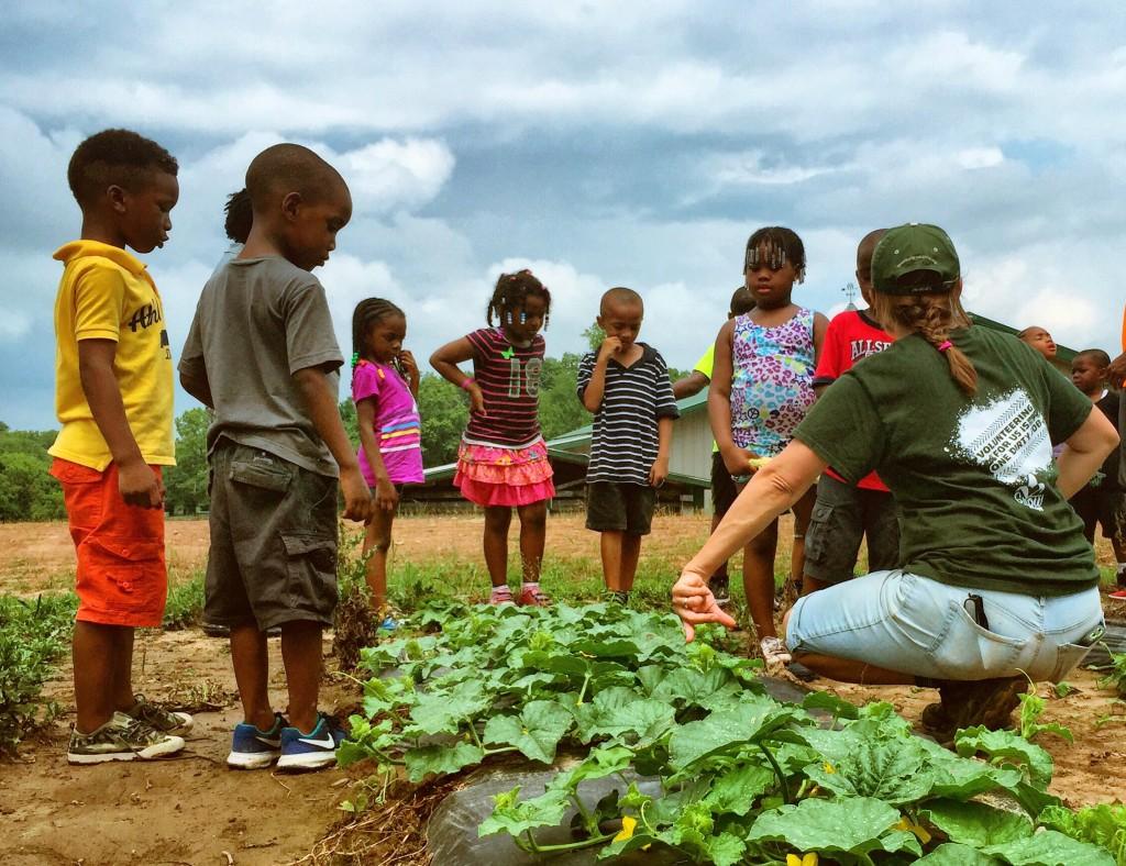 Seth Wolfson Farm Tour Image
