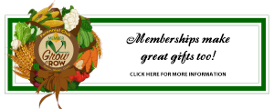 Memberships for holiday gift campaign graphic