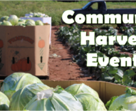 July Community Harvest